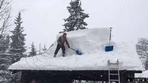 Allianz - SP eviduje vyše 600 škôd pri snehovej kalamite