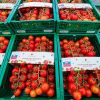 Paradajkovo: vďaka spolupráci s Tescom ponúkame domáce paradajky na celom Slovensku